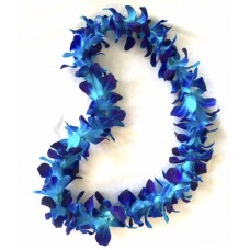 Single Blue Orchid Graduation Lei