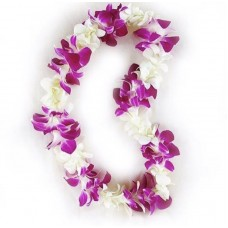 Purple and White Orchid Graduation Lei